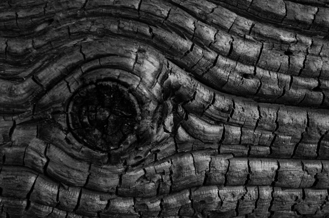 black wood photo